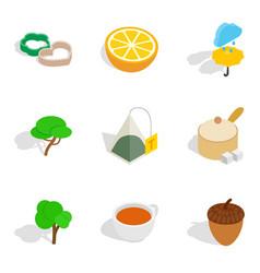 Vegan dish icons set isometric style vector