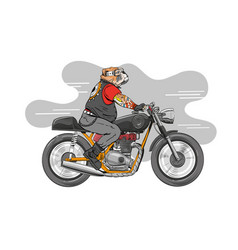 dog is riding a classic motorcycle vector image vector image