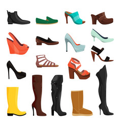 women shoes in different styles vector image vector image