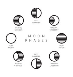 moon phases line icons set vector image