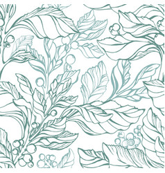 seamless pattern mate green herbal plant vector image