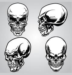 Set skull vector