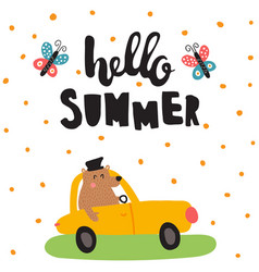 summer bear vector image