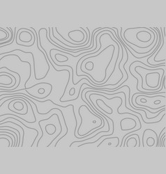 Topographic pattern lines on gray background vector