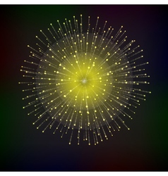 Bright abstract festive fireworks over black vector image