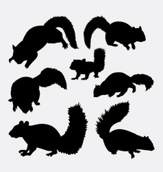 squirrel mammal animal silhouette vector image vector image