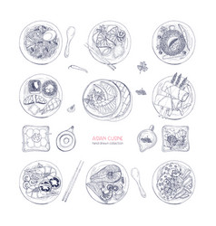 collection of hand drawn dishes of asian cuisine vector image vector image
