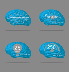 BrainInformation vector image