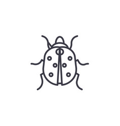 ladybug line icon sign on vector image