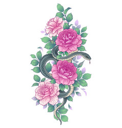 twisted snake among pink rose flowers vector image