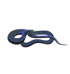 Decorative snake vector image