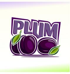 plum still life vector image vector image