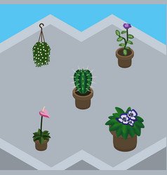 Isometric plant set of flowerpot flower grower vector