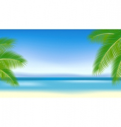 branches of palm trees against vector image vector image