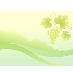 Beautiful green grape vine background vector image vector image