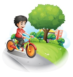 A boy with a red shirt biking vector image