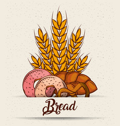 bread donuts pretzel pastry wheat poster vector image