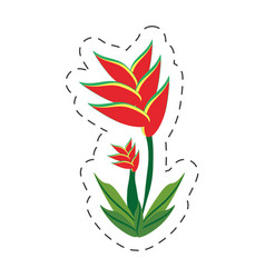 cartoon heliconia flower image vector image