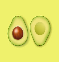 Fresh avocado with green background vector