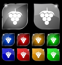 Grapes icon sign Set of ten colorful buttons with vector image