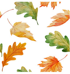Maple and oak leaves watercolor seamless pattern vector