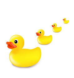 rubber duck isolated white background vector image