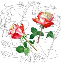 Seamless Pattern with Rose-03 vector image