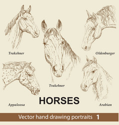 Set hand drawing horses 1 vector