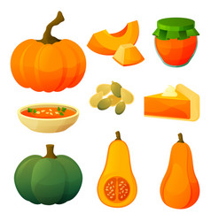 set pumpkin icons flat vegetable products vector image