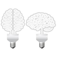 human brain bulb vector image
