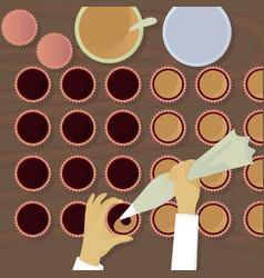 chocolatiers candy fills cream top view vector image vector image