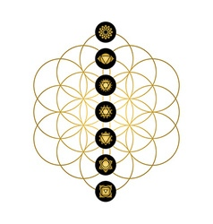 Modern yoga design chakra icons in gold color vector image