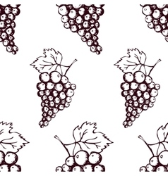 Seamless pattern with hand drawn decorative grapes vector image vector image