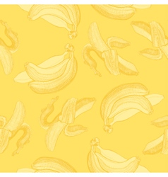 Bananas engraving drawing vector image