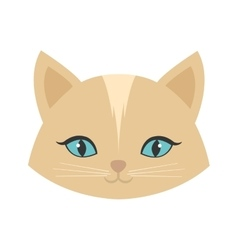 beauty face cat female blue eyes vector image