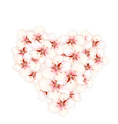 Bouquet sakura pink flowers in shape heart vector