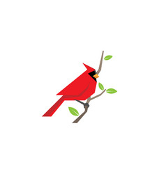 Cardinal bird logo vector