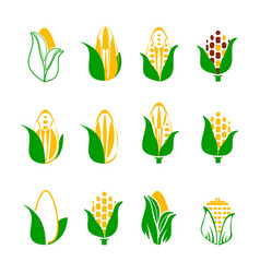 Corn icons set isolated on white rye seed with vector