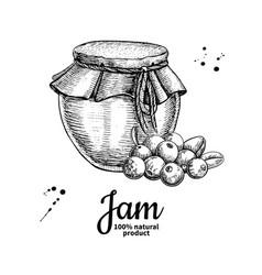 cranberry jam glass jar drawing frui vector image