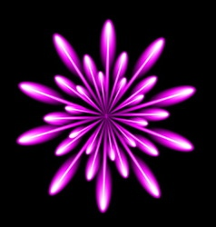 Firework salute burst in black night background vector image