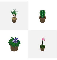 Isometric plant set of grower houseplant vector