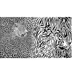 leopard and tiger and pattern background vector image
