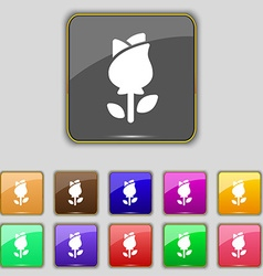 Rose icon sign set with eleven colored buttons for vector