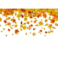 Background of autumn leaves EPS 8 vector image
