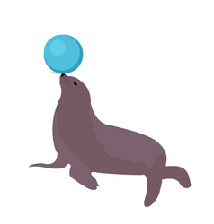 sea lion with a ball circus icon flat style vector image vector image