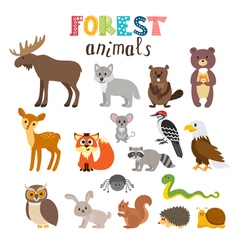 Set of cute forest animals in Woodland Cartoon vector image vector image