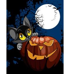 cartoon black cat with pumpkin at night vector image