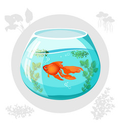 Gold fish floating in aquarium bowl vector