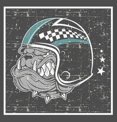Grunge style bulldog wearing helmet vector