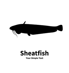 silhouette of fish catfish vector image